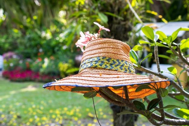 Ogrodnik, słomkowy kapelusz na drzewie w parku.