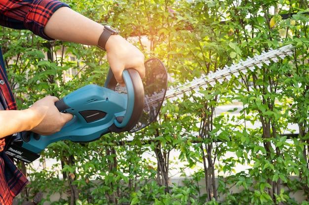 Ogrodnik trzymający elektryczne nożyce do żywopłotu do cięcia wierzchołków drzew w ogrodzie.