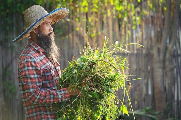 Ogrodnik trzymający w ramieniu kępę trawy