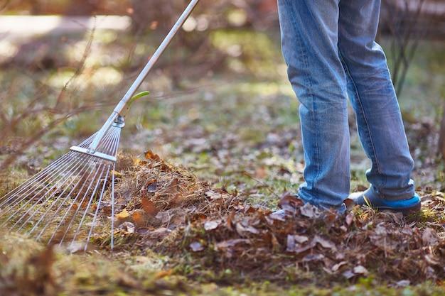 Ogrodnik usuwa opadłe liście wiosną lub jesienią. bez twarzy. zbliżenie