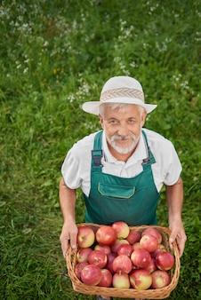 Ogrodnik w zielonym gospodarstwie kosz pełen świeżych czerwonych jabłek.