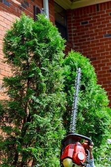 Ogrodnik z profesjonalnymi narzędziami ogrodowymi w pracy. sadzenie zieleni
