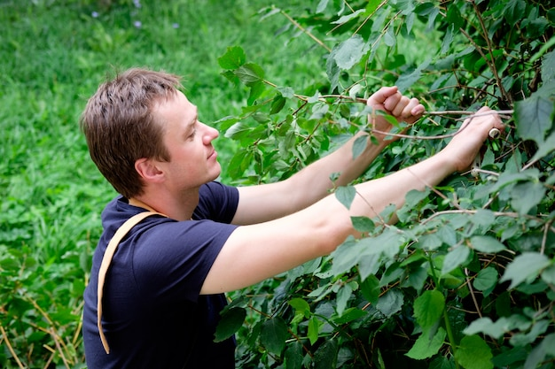 Ogrodnik z sekatorem w pracy