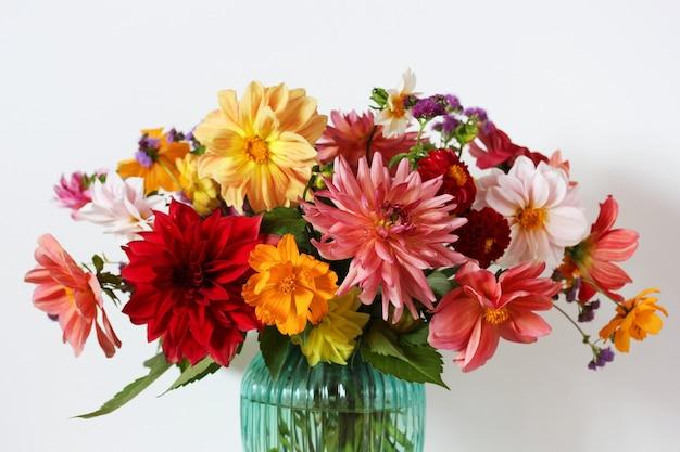 Ogrodowy bukiet dalii z bliska, selektywne focus. kwiatowy tło.