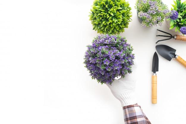 Ogrodowy mężczyzna chwyta kwiatu garnek na odosobnionym białym tle. koncepcja sadzenia drzew.