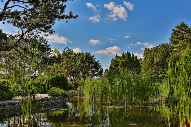 Ogrodu japońskiego znajduje się na margit island w budapeszcie, węgry w słoneczny letni dzień