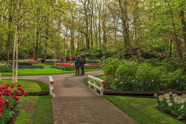Ogrody keukenhof z pięknymi wiosennymi kwiatami keukenhof w holandii