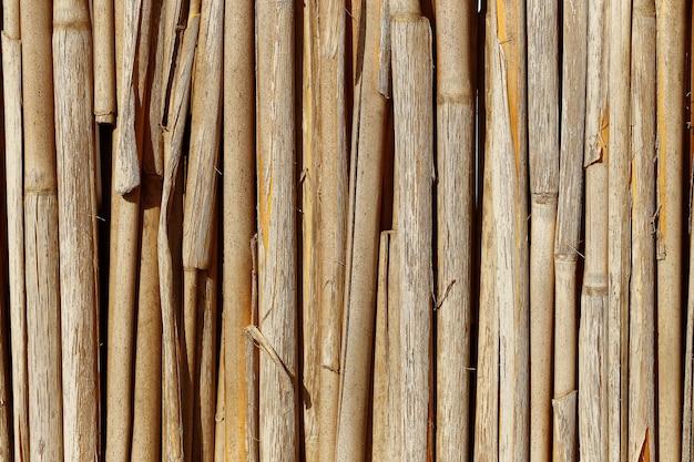 Ogrodzenie bambusowe
