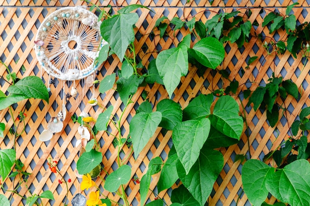 Ogrodzenie drewniane z pnączami i łapaczem snów na balkonie, ogrodowa weranda nowoczesny taras.