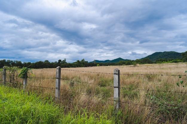Ogrodzenie z drutu kolczastego i wiejski trawnik lub zagroda dla zwierząt gospodarskich na tle górskiej scenerii.