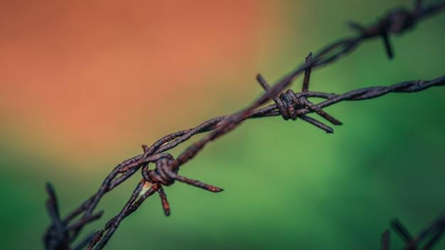 Ogrodzenie z drutu kolczastego