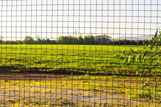 Ogrodzenie z drutu z zieloną trawą na tle. ogrodzenie z siatki ogrodowej w kolorze zielonym
