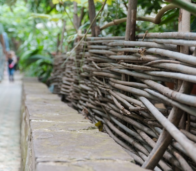 Ogrodzenie z wikliny w ozdobnej szklarni. tropikalna oranżeria