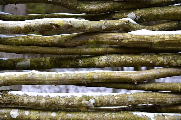 Ogrodzenie ze starych drewnianych gałęzi w zimie