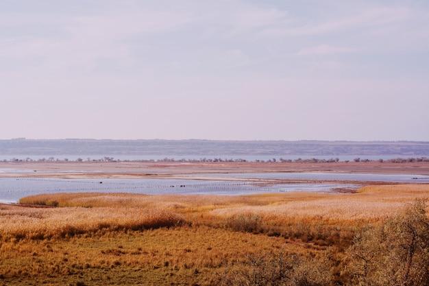 Ogromne ziemie pokryte zimą wyschniętą trawą z morzem