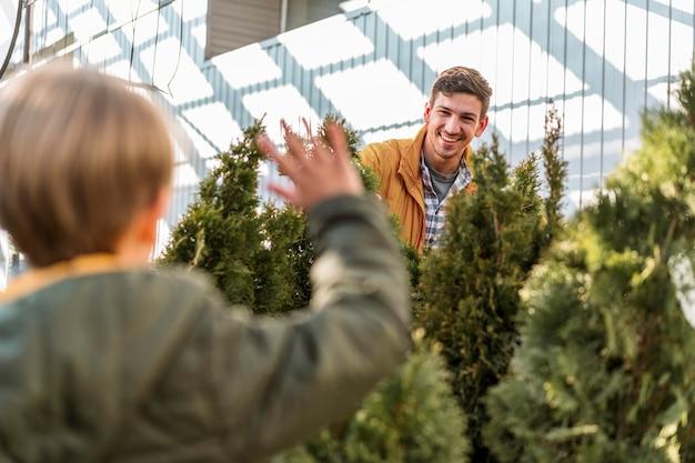 Ojciec i syn razem przy zbiorze szkółek drzew