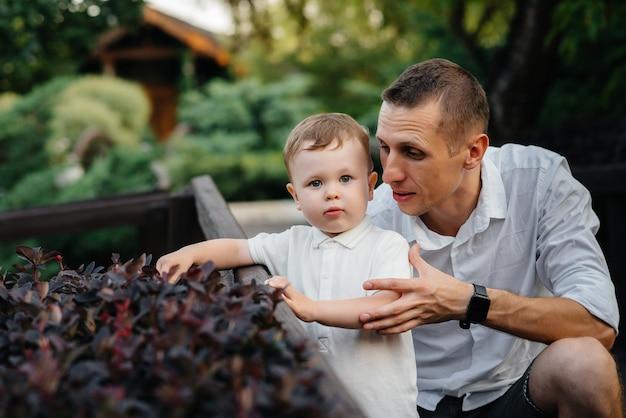 Ojciec i syn spacery w parku o zachodzie słońca. szczęście. miłość.