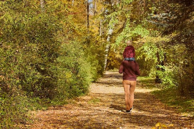 Ojciec z synem na ramionach spaceru w lesie jesienią. widok z tyłu