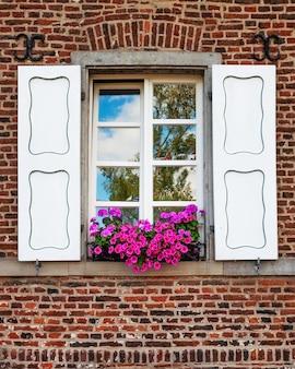 Okno z białymi okiennicami, różowymi kwiatami geranium i petunii na starym ceglanym murze