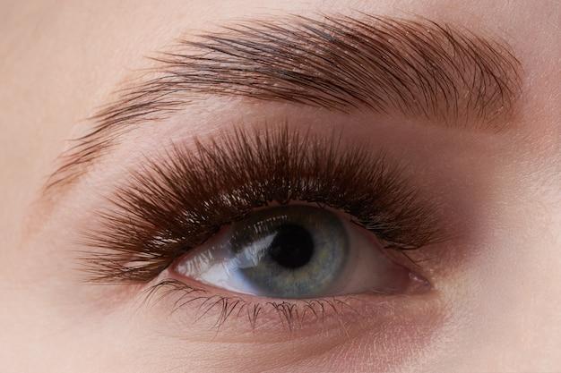 Oko dziewczyny z jasnoniebieskim tęczówką i brązową brwią