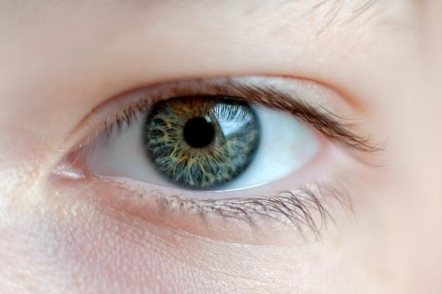 Oko ludzkie z bliska. zdjęcie makro