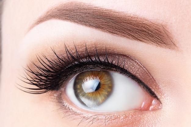 Oko z długimi rzęsami i jasnobrązowym zbliżeniem brwi. laminowanie rzęs, mikroblading