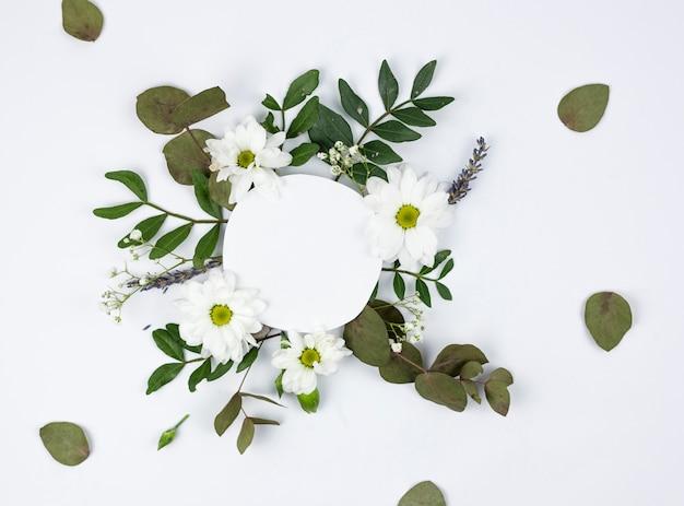Okrągła biała ramka nad białą stokrotką i kwiatami oddechu dziecka