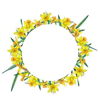 Okrągła rama realistycznych żółtych narcissuses i zielonych liści.