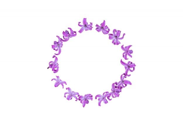 Okrągła rama z pastelowych fioletowych kwiatów hiacyntu na gradientowym różu. wieniec kwiatowy. układ na święta z okazji dnia matki, urodzin, ślubu lub innego szczęśliwego wydarzenia