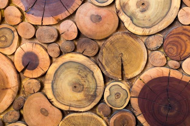 Okrągłe drewniane niepomalowane solidne naturalne ekologiczne miękkie kolorowe brązowe i żółte pnie, sekcje wycięte z drzewa różne rozmiary dla tekstury tła podkładki. koncepcja sztuki zrób to sam.