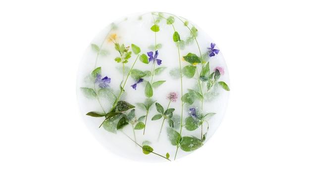 Okrągłe kwiaty zamrożone w lodzie i ziołach.