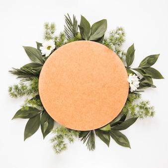 Okrągły papier na oddziałach zielonych roślin