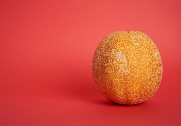 Okrągły żółty dojrzały melon na czerwonym tle, z bliska, kopia przestrzeń