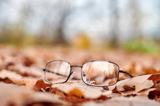 Okulary na liściach jesienią. jesienna koncepcja utraty wzroku.