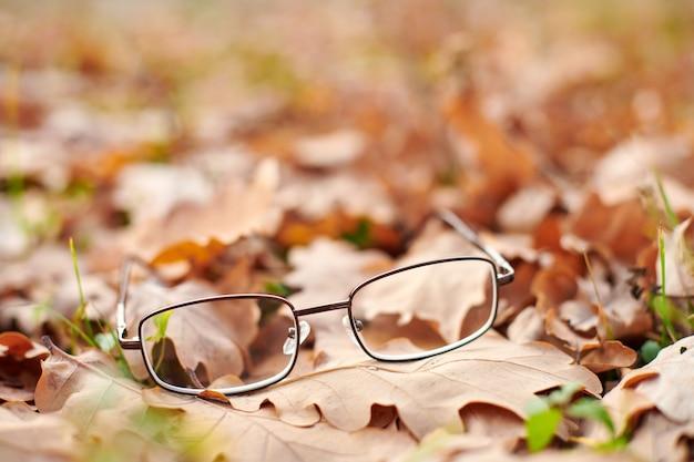 Okulary na liściach jesienią. zgubione okulary jako symbol nagłej utraty wzroku. niedobór witamin z wiekiem.