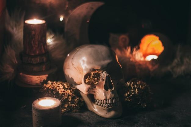 Okultystyczna scena mistycznego rytuału czarownic na halloween - ludzka czaszka, świece, suszone kwiaty, księżyc i sowa.