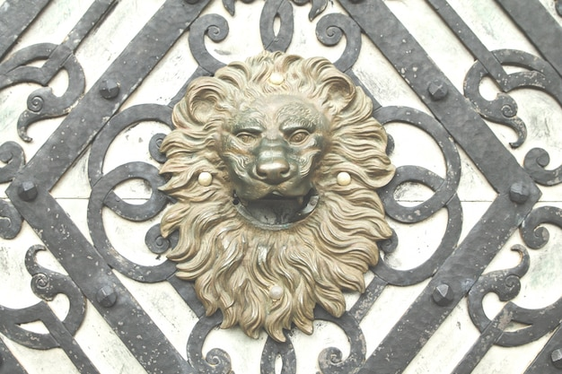 Old lion head door