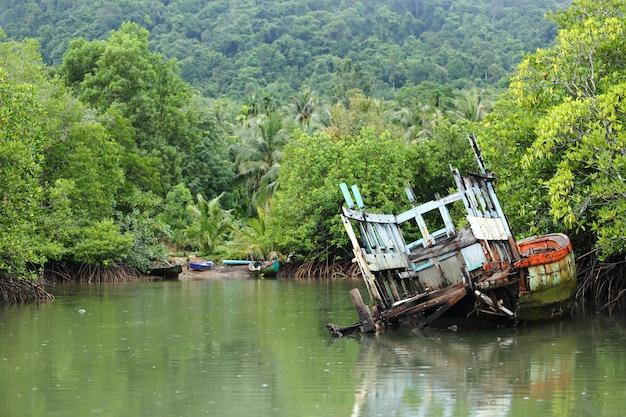 Old sink fishing boat dock martwy wzdłuż kanału namorzynowego leśnej dżungli