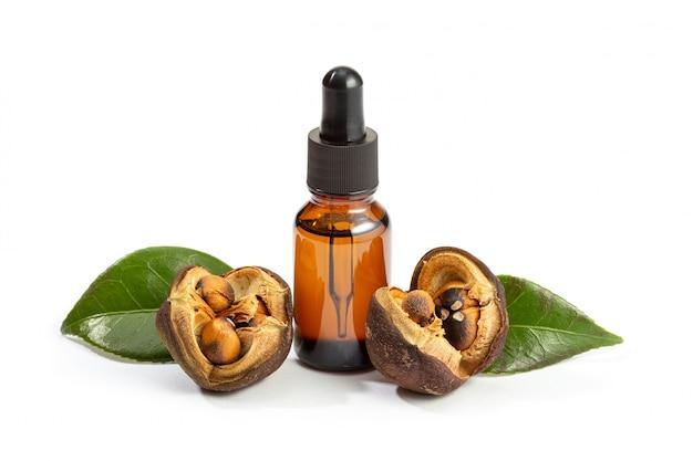 Olej kameliowy na białym tle. butelka olejku kameliowego i nasiona kamelii. uroda, pielęgnacja skóry, wellness