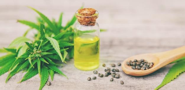 Olej konopny w małej butelce. selektywne ustawianie ostrości.