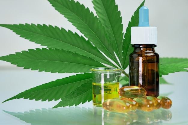 Olej z konopi indyjskich cbd w kapsułkach lub pigułkach i butelce leżący na świeżym zielonym liściu marihuany