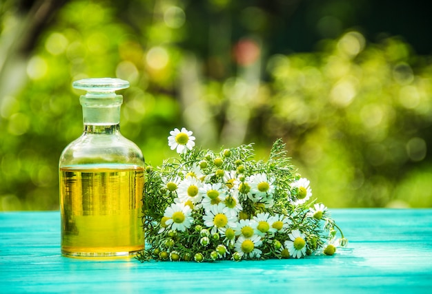 Olejek eteryczny z rumianku i bukiet świeżych kwiatów rumianku.