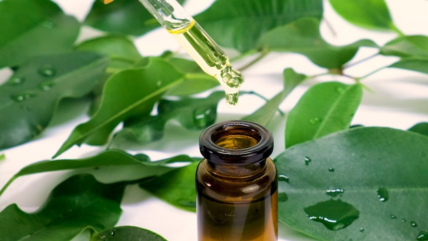 Olejek z drzewa herbacianego w małych butelkach. selektywna ostrość. natura