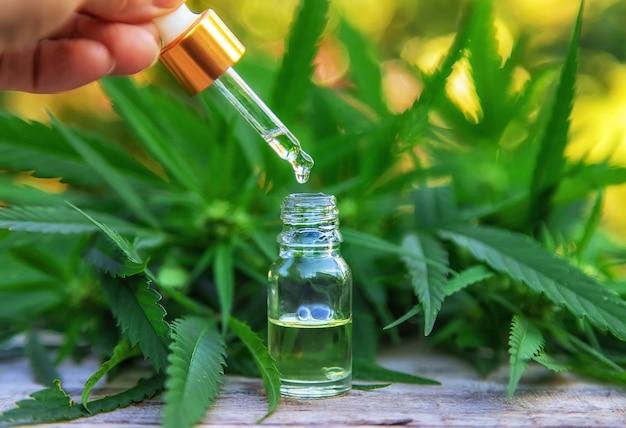 Olejek z marihuany w małej butelce. selektywne skupienie.