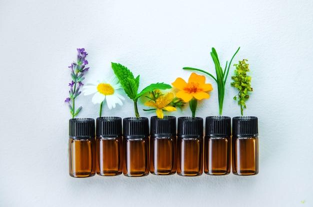 Olejki eteryczne i ekstrakty ziołowe w małych buteleczkach. selektywne skupienie. natura.