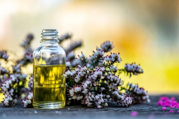 Olejki eteryczne i zioła medyczne kwiaty na tle bokeh.