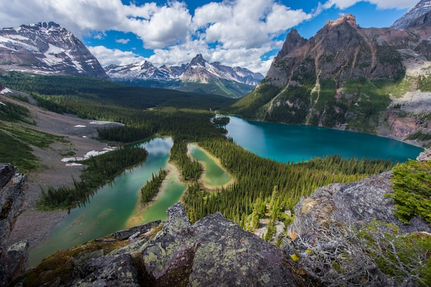 Opabin jezioro piękny szlak turystyczny w pochmurny dzień na wiosnę, yoho, kanada