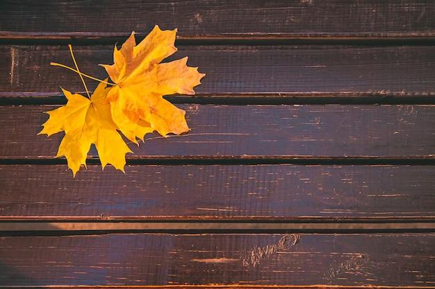 Opadły żółty liść klonu na brązowej drewnianej ławce w parku miejskim