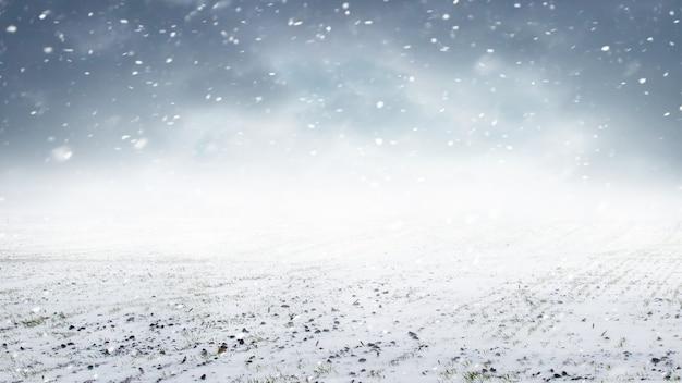 Opady śniegu na polu. pole z pszenicą ozimą i zachmurzone niebo podczas opadów śniegu