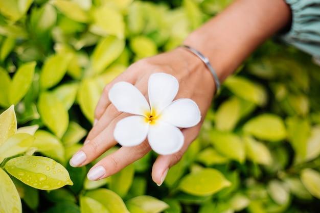 Opalona dłoń z naturalnym manicure z uroczą jubilerską srebrną bransoletką z białym tajskim kwiatem plumeria
